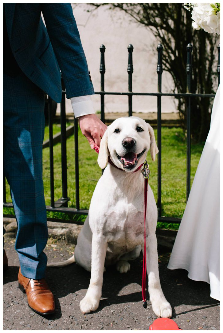 We_Can _ Be_Heroes_Irish_wedding_photographer_0121